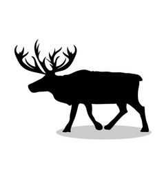 deer northern black silhouette animal vector image vector image