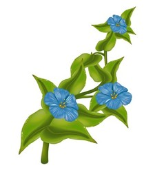 Plant with Blue Flowers vector image vector image