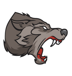 grinning wolf vector image vector image