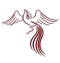 Black and red graceful Firebird contour vector image