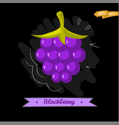 blackberry cartoon icon colorful vector image