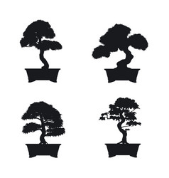 bonsai set black silhouette vector image