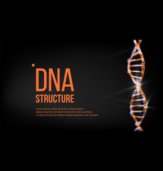 Dna structure digital cell evolution vector