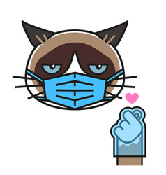 grumpy cat loves k pop in medical mask and gloves vector image