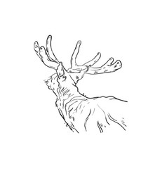 hand drawn abstract fun cartoon merry vector image
