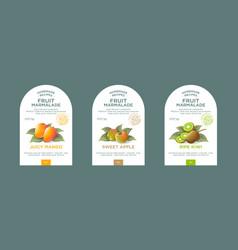set labels packaging fruit marmalade label vector image