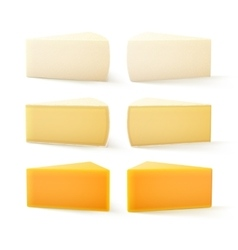 Set of pieces swiss cheese cheddar bri camembert vector