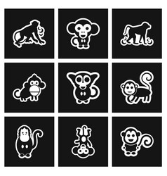 Assembly stylish black and white icons monkey vector