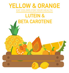 Eat colors for your health-yellow amp orange vector