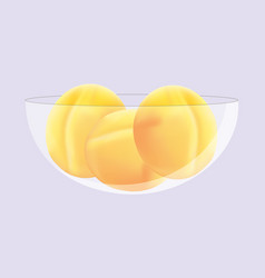 Fresh sweet ripe yellow apricots in the bowl vector