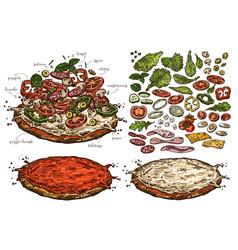 set sketch food elements for pizza vector image
