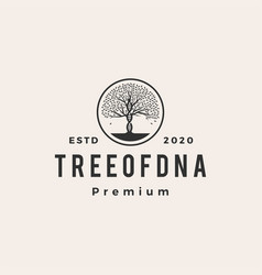tree dna roof hipster vintage logo icon vector image