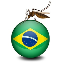 Brazil flag on ball and mosquito vector image vector image