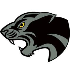 head jaguar vector image