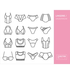 Lingerie and underwear vector