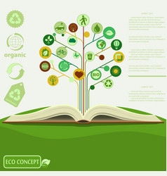 Ecology info graphics modern design green tre vector