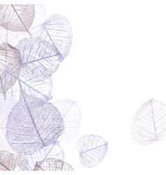 festive winter background with frame of hoarfrost vector image