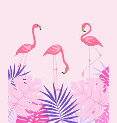 Palm leaves and flamingo vector