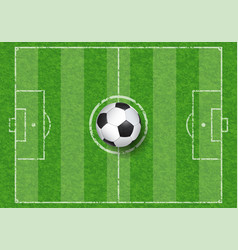 soccer ball on football field vector image