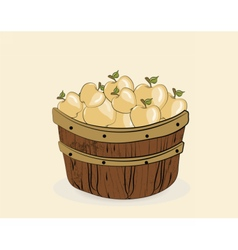 Yellow apples in a wooden basket vector