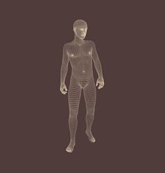 3d model of man geometric design vector