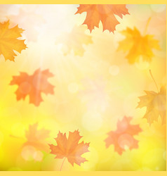 Autumn background with blurred maple fallen leaves vector