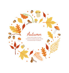 autumn banner template with colorful leaves of vector image