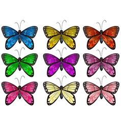 Butterflies in different colors vector image