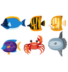 different kinds of cute animals in the sea vector image