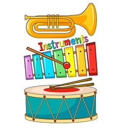 Different type of musical instrument vector