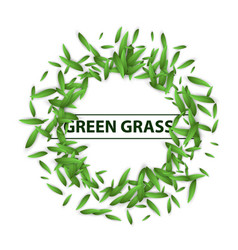 green grass leaf banner vector image