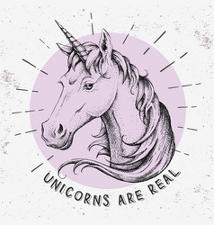 Hand drawing hipster fantasy animal unicorn vector