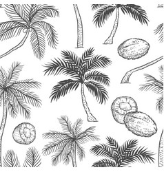 seamless pattern of palm different black vector image