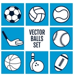Set of sports balls icons on a blue background vector image