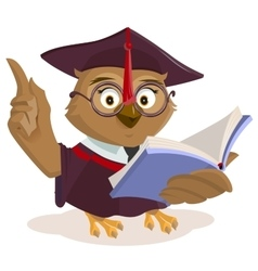 Owl teacher reading book vector image