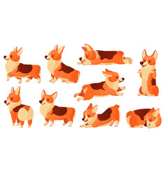 cartoon dog character sleeping corgi dogs poses vector image