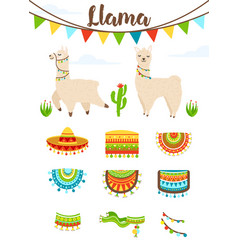 cute alpaca and llama with saddlery sombrero hat vector image