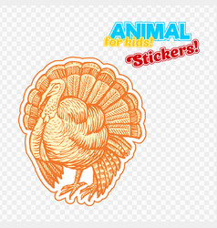 Farm animal turkey in sketch style on colorful vector