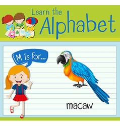 Flashcard letter M is for macaw vector