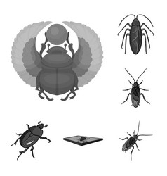 insect and beetle logo set vector image