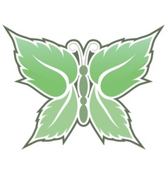 mint butterfly vector image