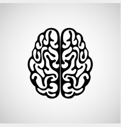 outline human brain on white background vector image