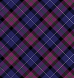 Pride of scotland tartan fabric diagonal texture vector
