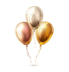 realistic shiny balloons vector image