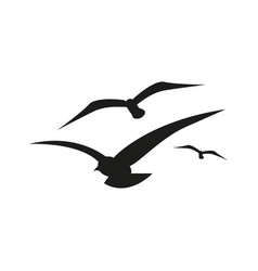 Seagull icon simple vector
