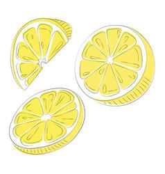set lemons collection slices lemon vector image