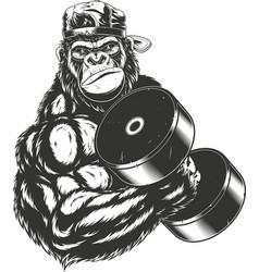 Terrible gorilla athlete vector
