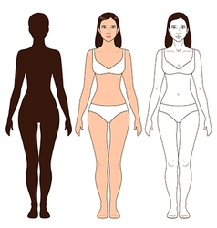 Woman body outline vector