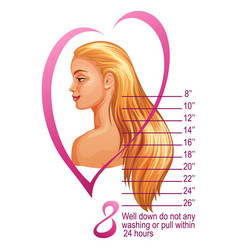 Womans hairstyle and scale of hair extensions vector