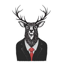 serious deer dressed in jacket vector image